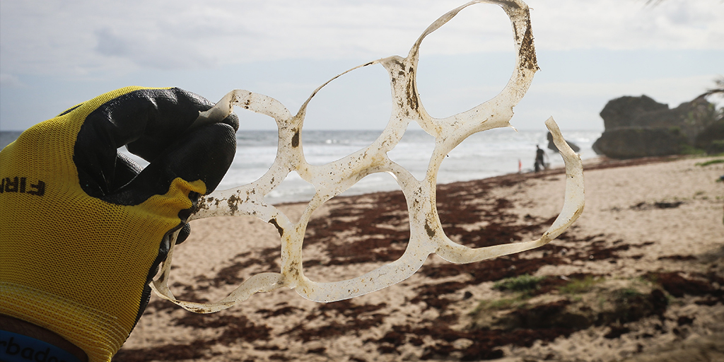 Students and alumni working together to fight plastic pollution
