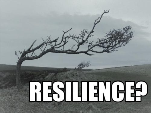 Promoting resilience and questioning resilience