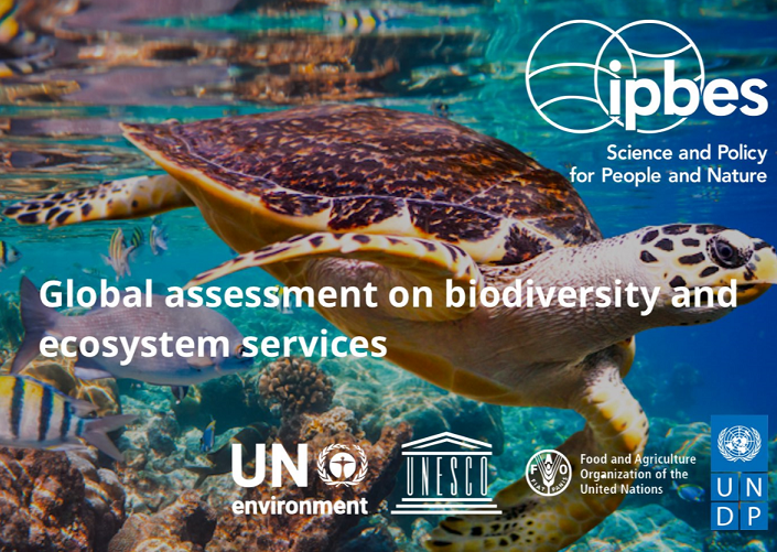 UWE Bristol Professor contributes to United Nations report on Biodiversity and Ecosystem Services