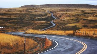 The long and winding road to science journalism