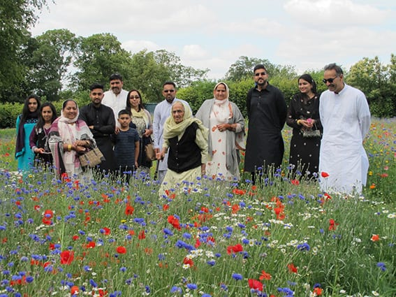 The Power of Flowers….designing urban meadows for people and wildlife